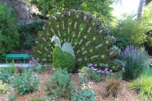 Garden in Coutances